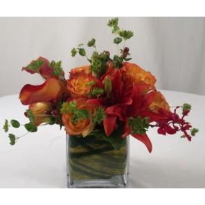 Circus Roses and Mango Calla Lily - PF78