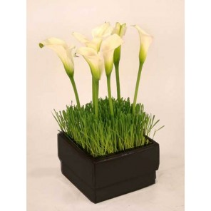 Lilies with Wheat Grass in Black Ceramic Container - PF72