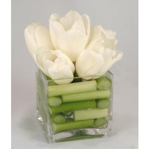 White Tulips in Glass Cube - PF37