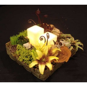 Rustic Square Eclectic Forest Arrangement  - PF89