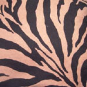 Serengeti - LPR55