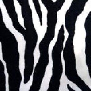 Zebra - Chair Sleeve - LPR19b (Qty: 900+)